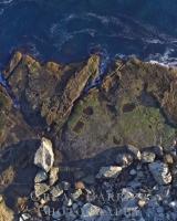 Aerial Coast DJI_0159