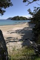 Harataonga Beach 6339