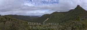 Mount Heale 7453_61