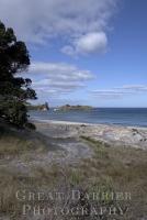 Palmer's Beach 5579