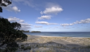 Palmer's Beach 5706
