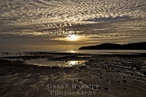 Gooseberry Flat Beach Tryphena 8353