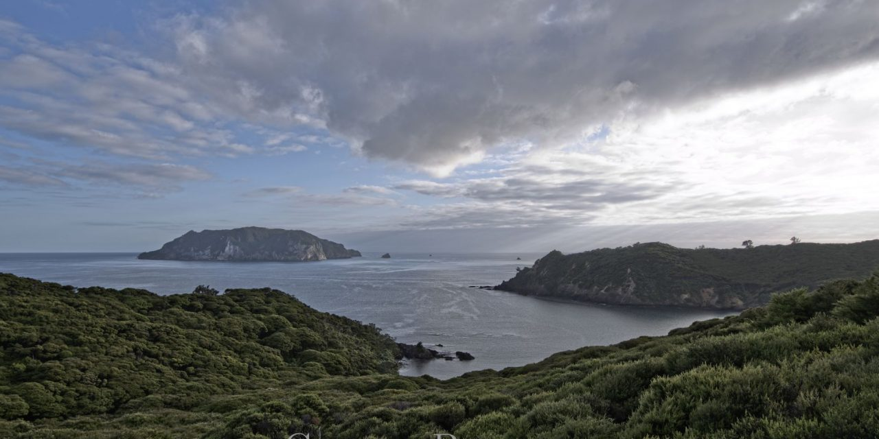 Harataonga Coastal Walk – Rakitu Island