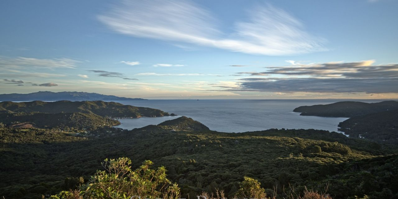 Looking For Great Barrier Island Photos